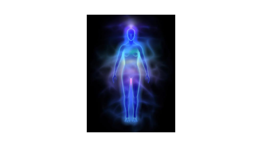 endokannabinoid rendszer, menopauza
