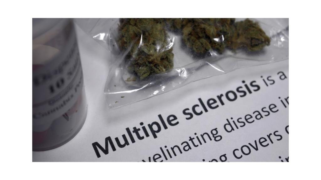 sclerózis multiplex cbd