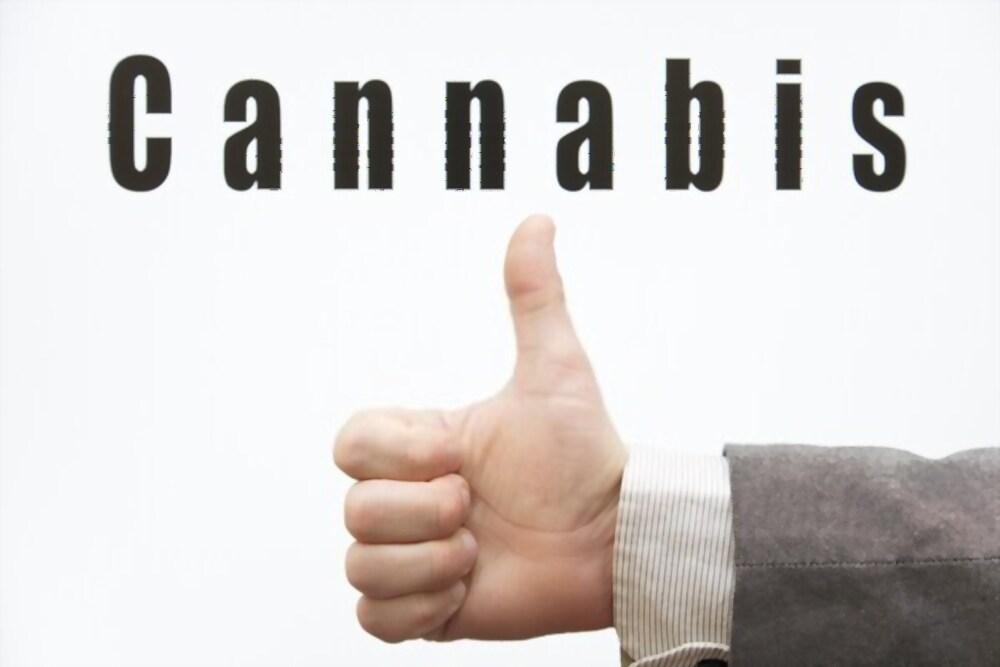 cannabis alakalmazható a  sportolóknak,